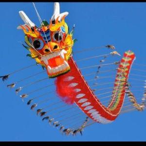 Real Chinese Kite